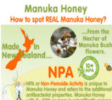 infographic Manuka Honey